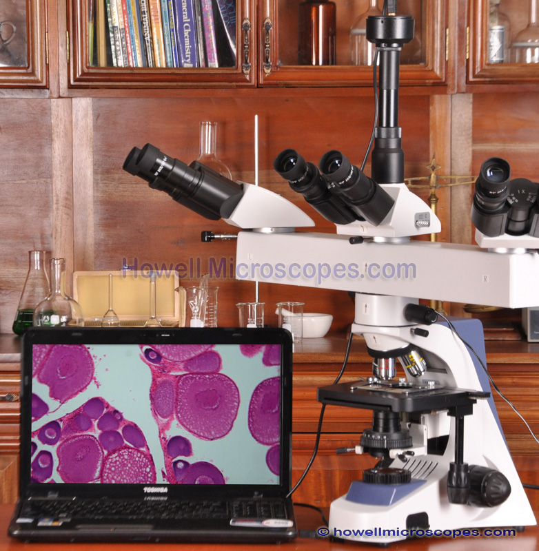 Clearance Sale 3 Head Teaching Microscope Student Teacher